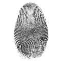 Identity Theft Pic